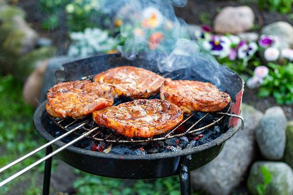 wielofunkcyjny grill ze sklepu