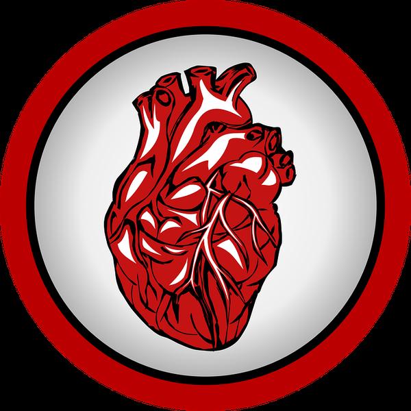 fachowy kardiolog w krakowie